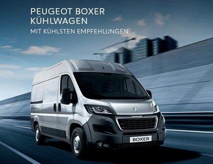 /image/48/7/boxer-kuehlwagen.351487.jpg